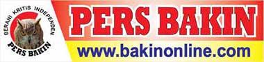Bakin Online